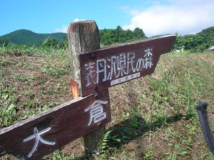 大倉と表丹沢県民の森の分岐点標識