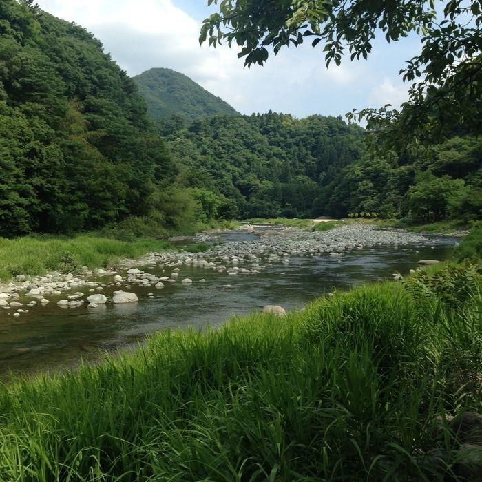 青野原オートキャンプ場の山々に囲まれた道志川