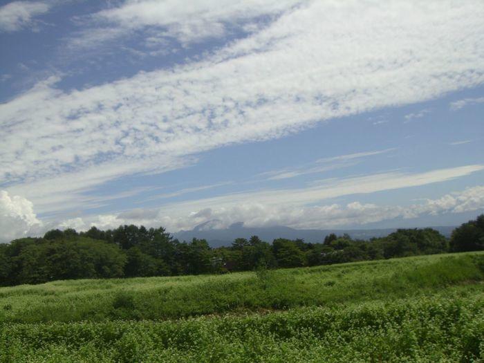 北横岳の高原の様子