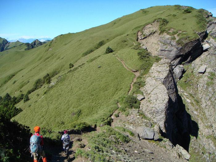 一面に緑が生い茂る山肌