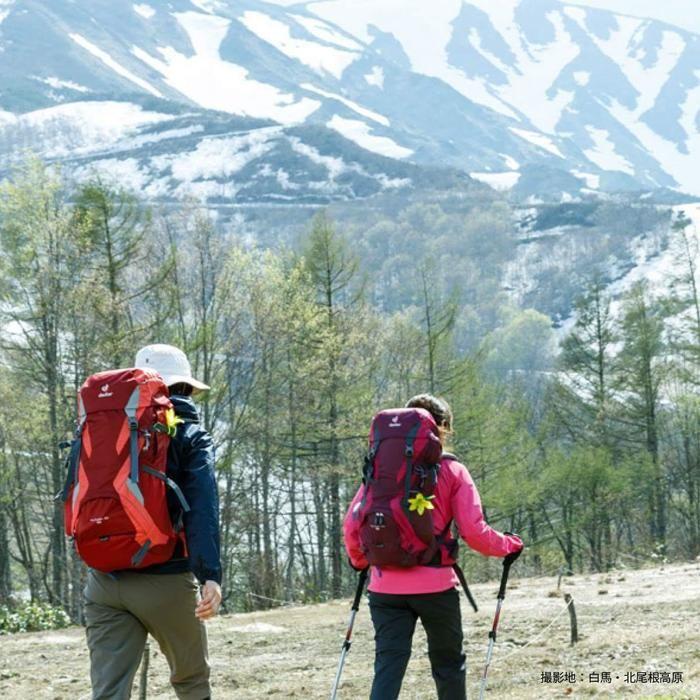 ドイターのリュックを背負ってハイキングを楽しむ人の後ろ姿