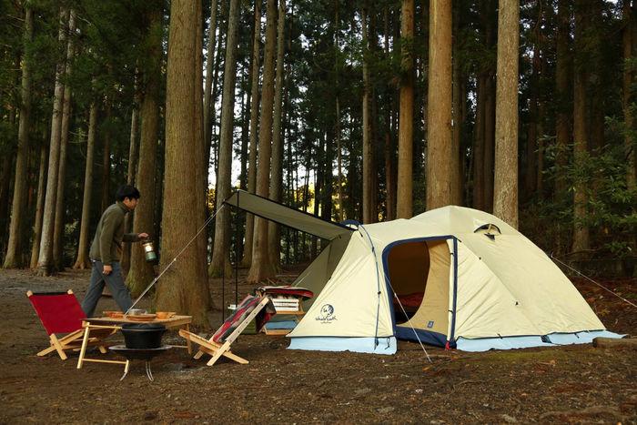 秋のキャンプ 林とテントの風景