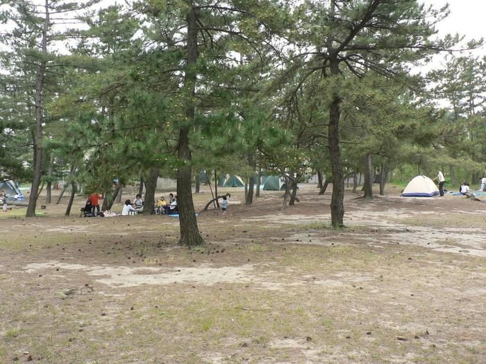 鳥取県のキャンプスポット