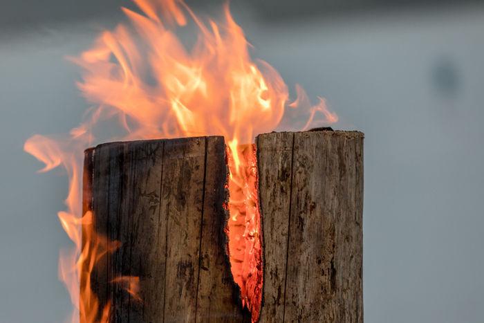 燃えている焚き木