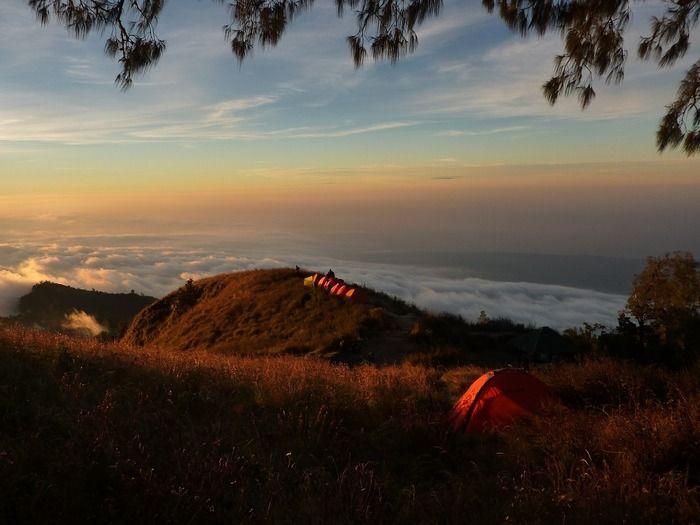 山の上のキャンプ場から見る雲海