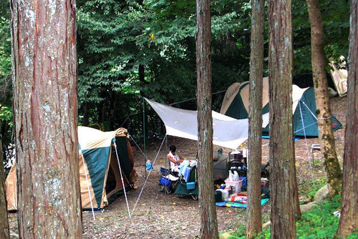 林間サイトに張られたテントと広い前室