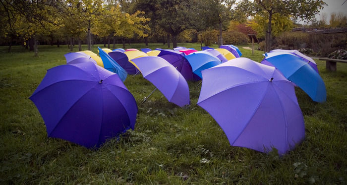 芝生に広げたパープルやブルーのたくさんの傘