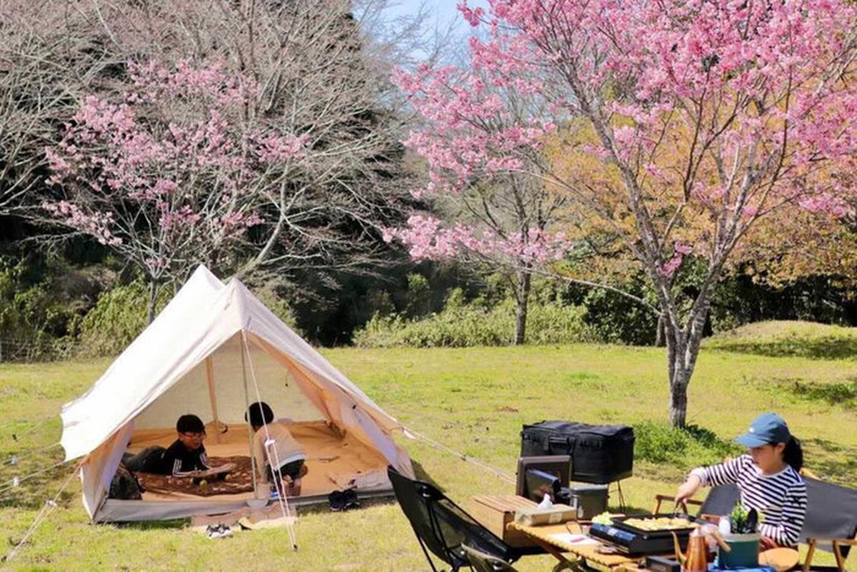 tamagoanryuさんのキャンプサイト