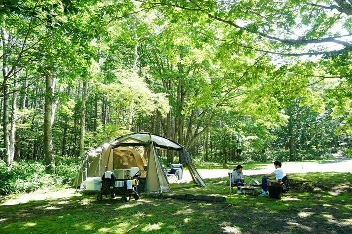 木漏れ日とせせらぎでリフレッシュ。「休暇村嬬恋鹿沢キャンプ場」がキャンプ初心者におすすめの3つの理由
