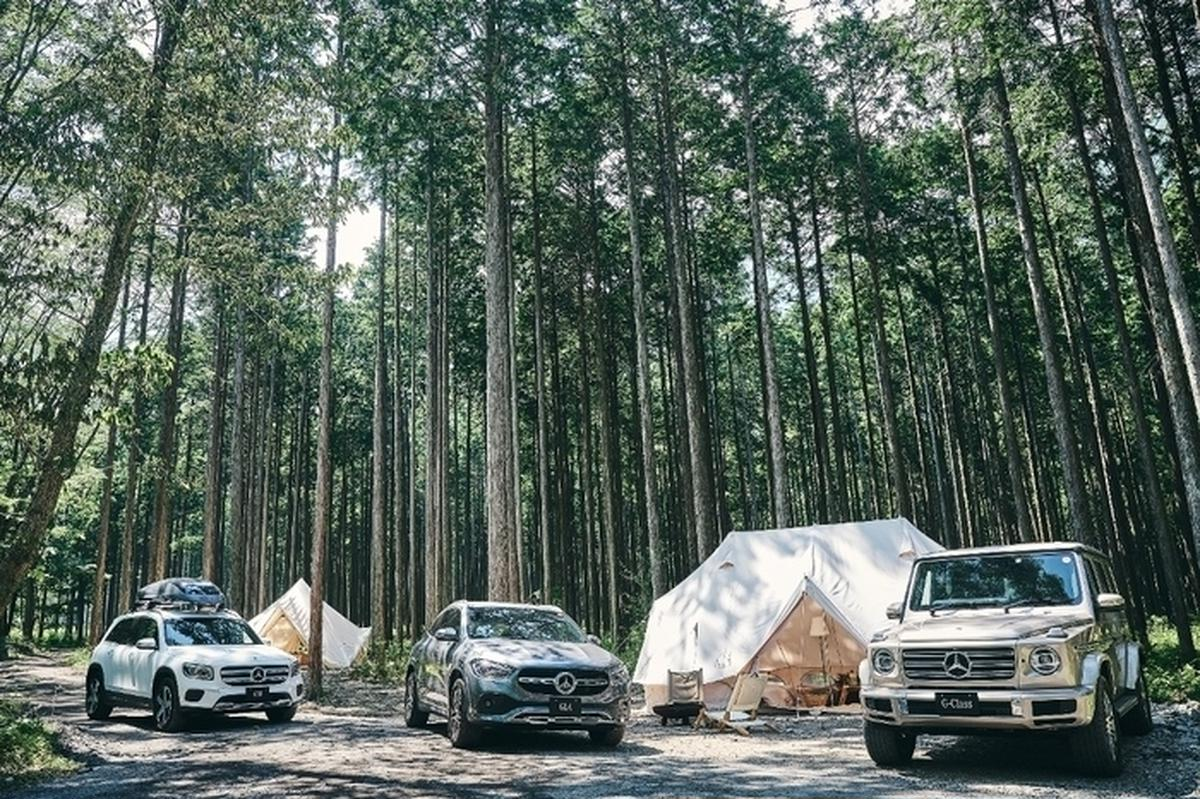 Mercedes me Forest